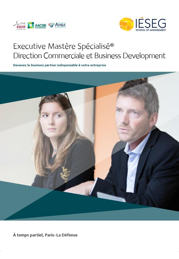 Mastère Spécialisé Direction Commerciale et Business Development