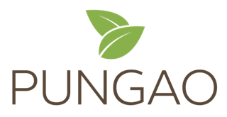 Découvrez Pungao, la startup fondée par Roxane Leroy, diplômée IÉSEG